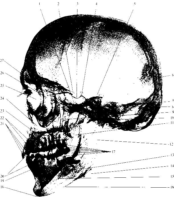 рис. img1-26
