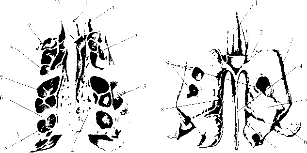 рис. img2-3