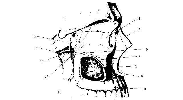 рис. img2-38