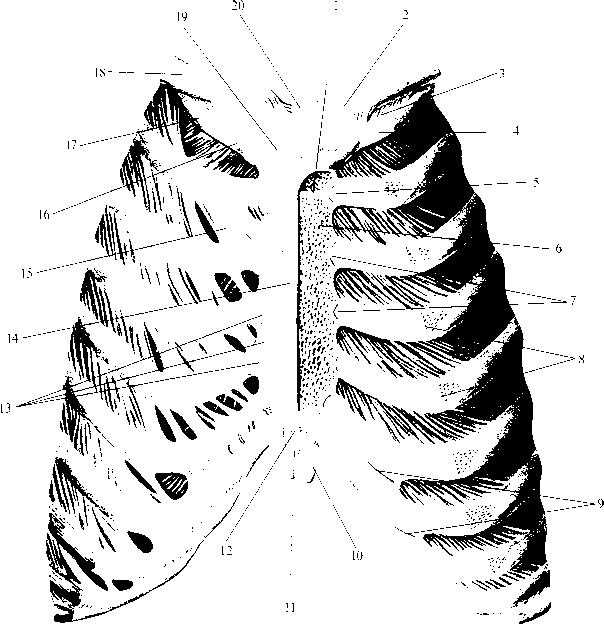 рис. img2-72
