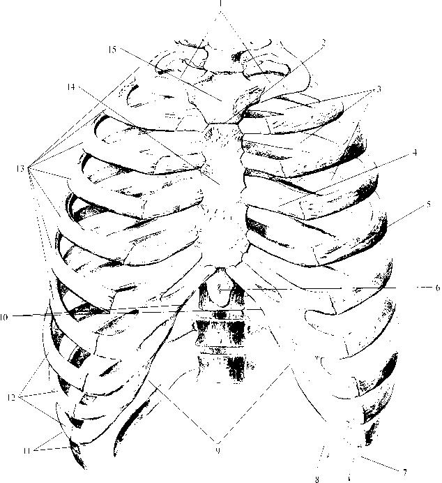 рис. img2-73