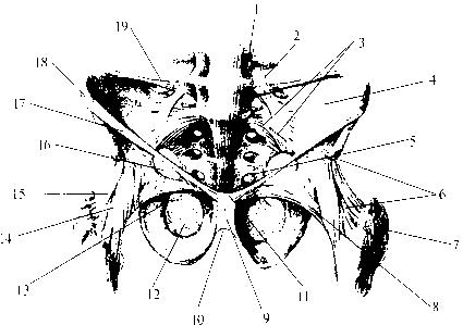 рис. img2-79